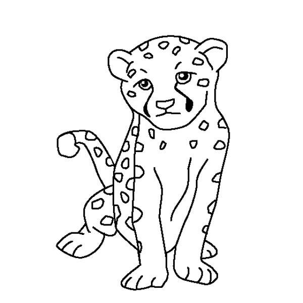 baby cheetah coloring pages pictures of baby cheetahs coloring home cheetah coloring baby pages