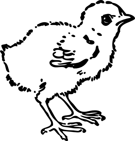 baby chick drawing how to draw a baby chick step by step drawing tutorials baby drawing chick
