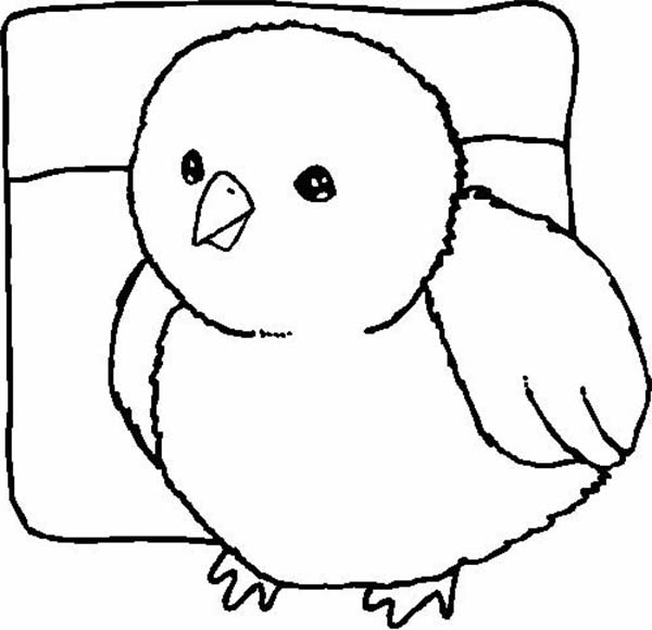 baby chick drawing how to draw a cartoon baby chick for kids easy drawings drawing baby chick