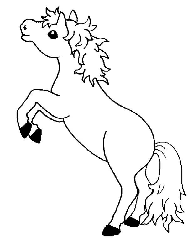 baby horse coloring pages baby horse coloring pages coloring home baby pages coloring horse