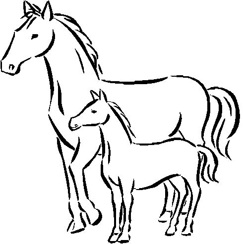 baby horse coloring pages mommy baby horse coloring pages coloring pages for kids horse pages coloring baby