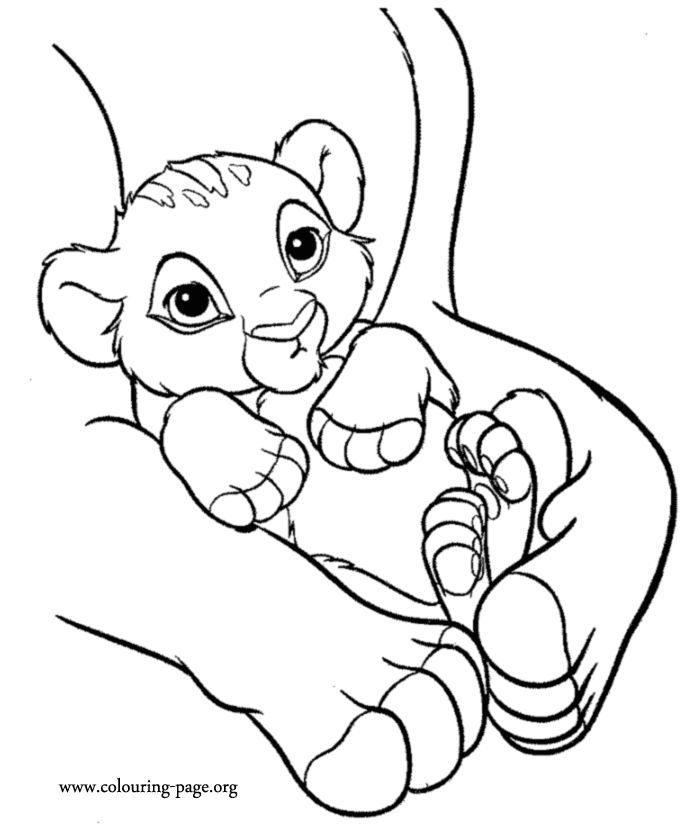 baby lion coloring pictures baby lion coloring pages baby lion coloring pages baby baby pictures coloring lion