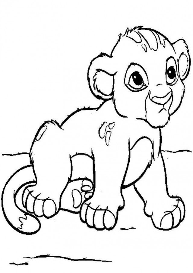 baby lion coloring pictures baby lion drawing at getdrawings free download lion pictures coloring baby