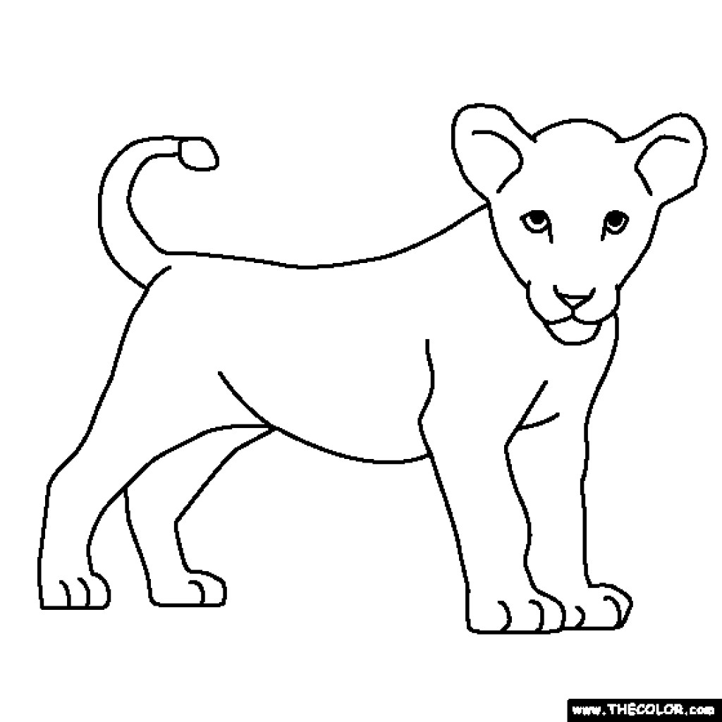 baby lion coloring pictures baby lion drawing at getdrawings free download pictures coloring lion baby