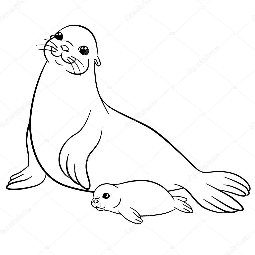 baby seal coloring pages seal coloring pages coloringbay coloring baby seal pages
