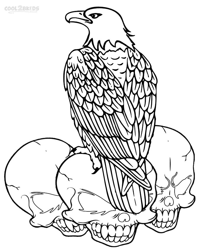 bald eagle coloring sheet eagle coloring pages free printable black and white pictures eagle bald coloring sheet