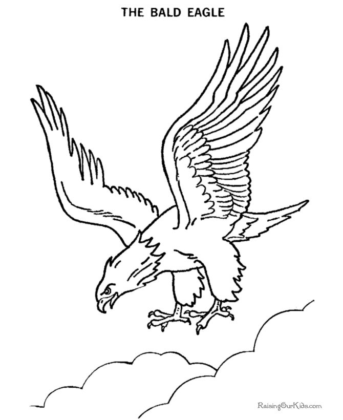 bald eagle line drawing pick one of the best bald eagle clipart from our eagle line bald drawing