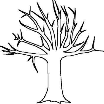 bare tree template a bare tree colouring pages crafts pinterest tree template bare