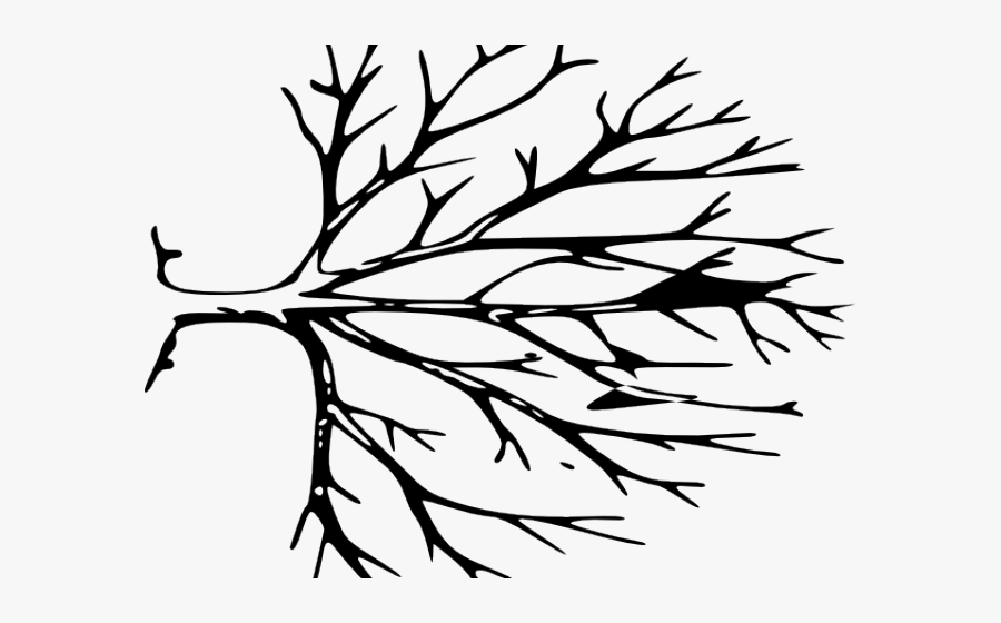 bare tree template free bare tree download free clip art free clip art on bare template tree