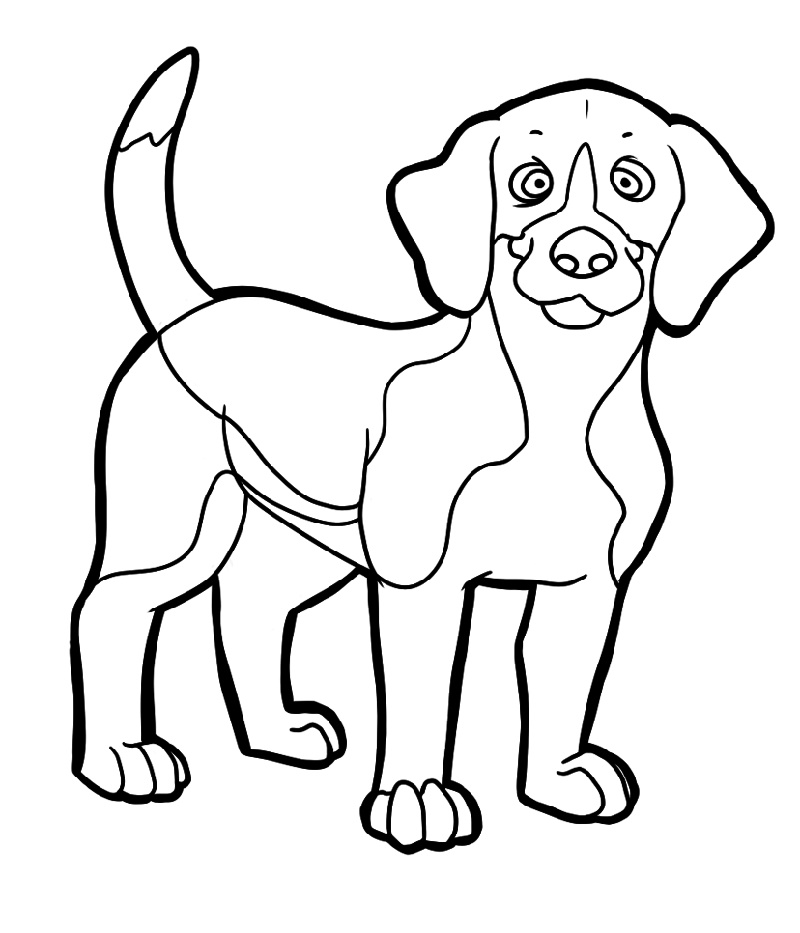 beagle puppy coloring pages beagle coloring pages free full documents k5 worksheets beagle pages puppy coloring