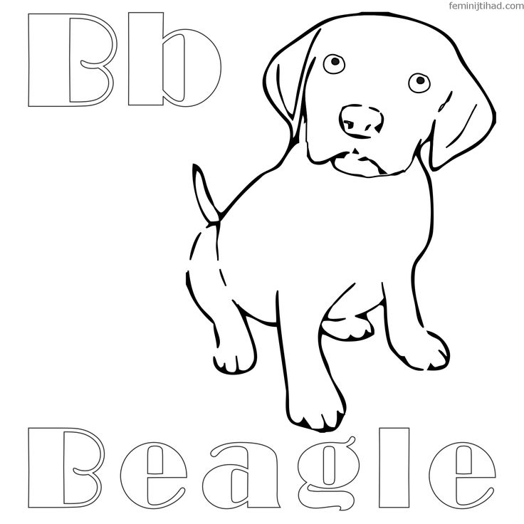 beagle puppy coloring pages beagle dog coloring pages at getcoloringscom free coloring pages beagle puppy