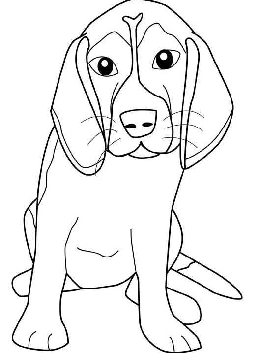 beagle puppy coloring pages dashing dog with ear width coloring puppy pages beagle