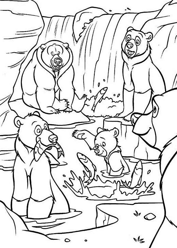 bear family coloring pages american black bear family coloring page supercoloring family pages bear coloring