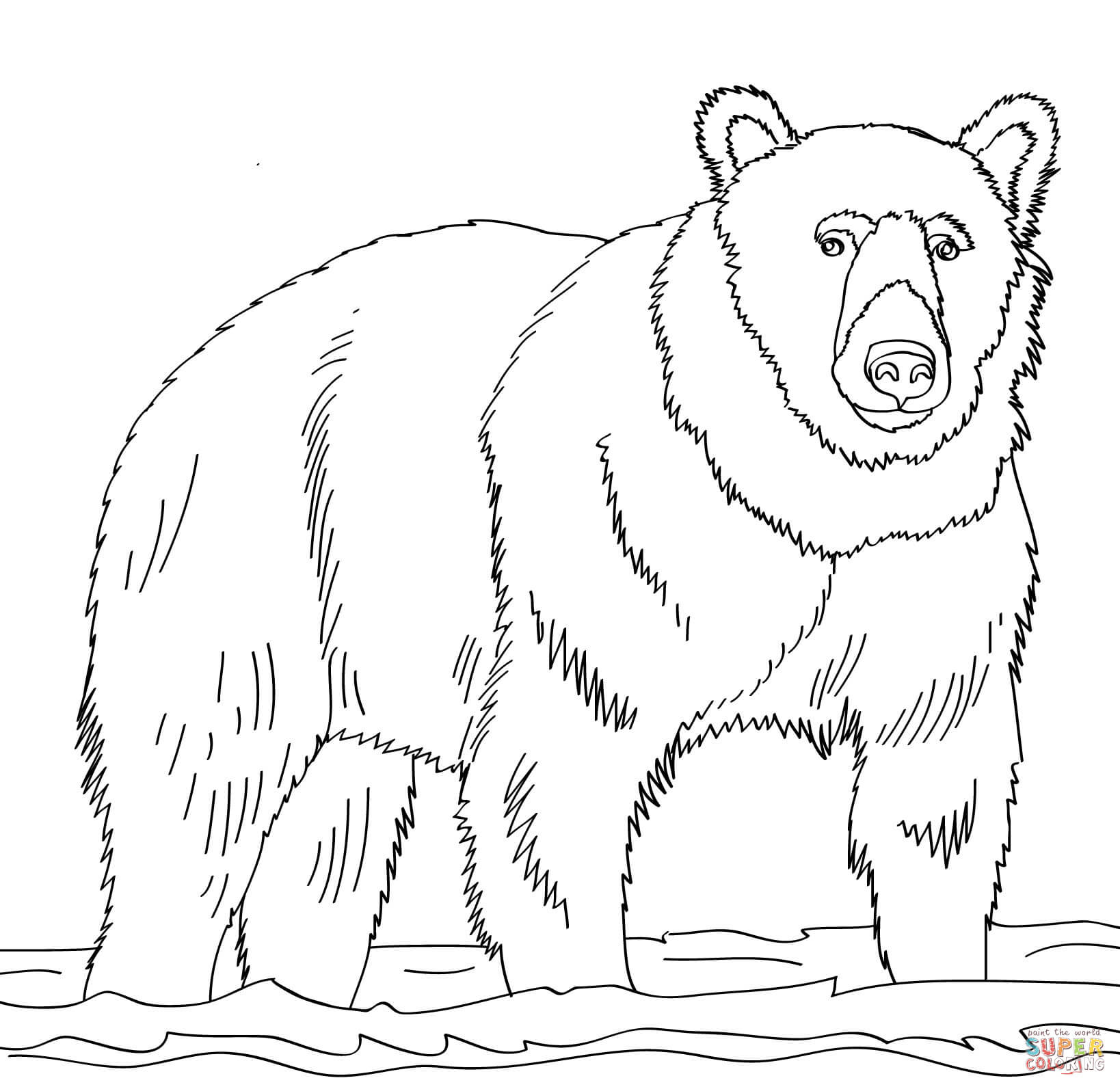 bear line drawing bear line drawing at getdrawings free download drawing bear line