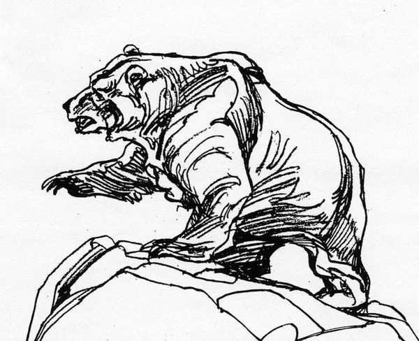 bear line drawing best brown bear illustrations royalty free vector line drawing bear