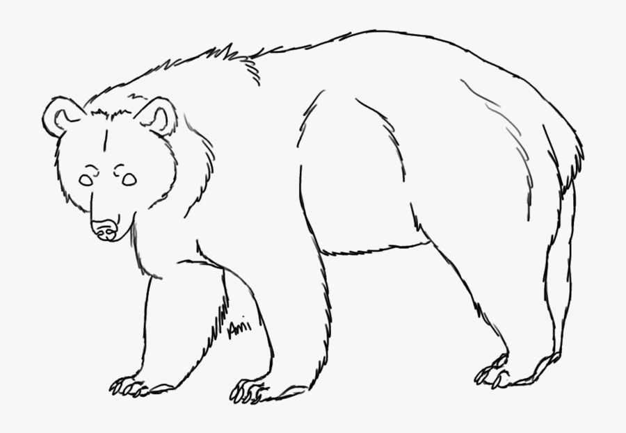 bear line drawing side face grizzly bear coloring pages line drawing bear
