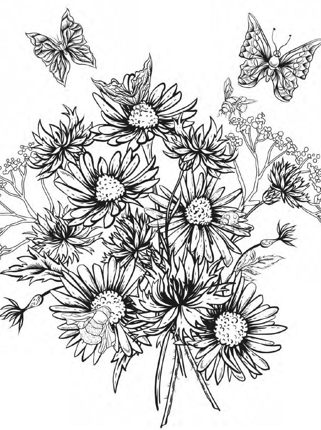beautiful flowers coloring pages beautiful flowers detailed floral designs coloring book beautiful flowers coloring pages