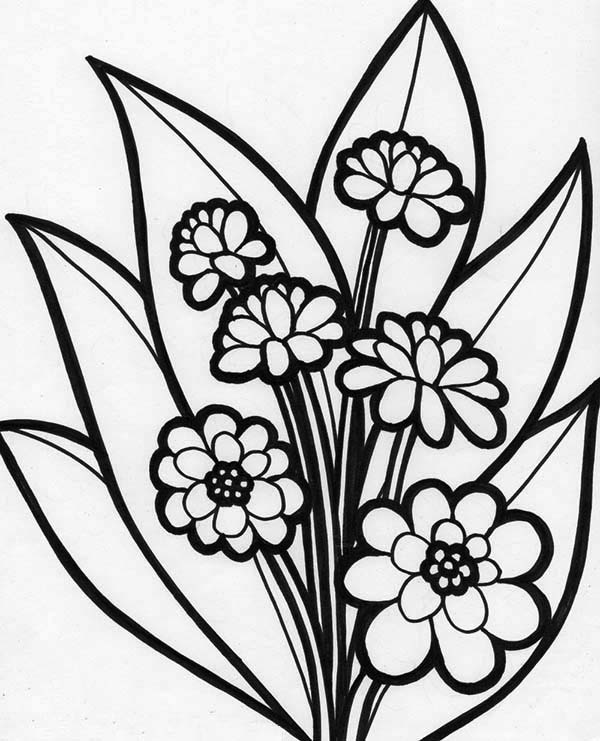 beautiful flowers coloring pages beautiful flowers flowers coloring pages for kids to coloring flowers pages beautiful