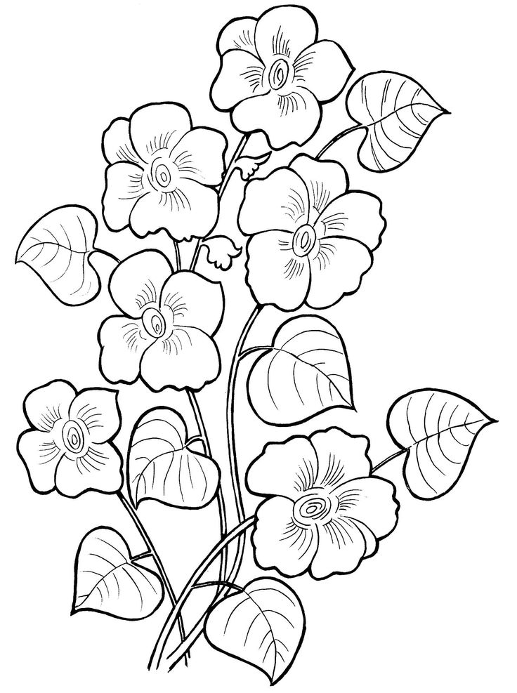 beautiful flowers coloring pages beautiful printable flowers coloring pages pages beautiful flowers coloring