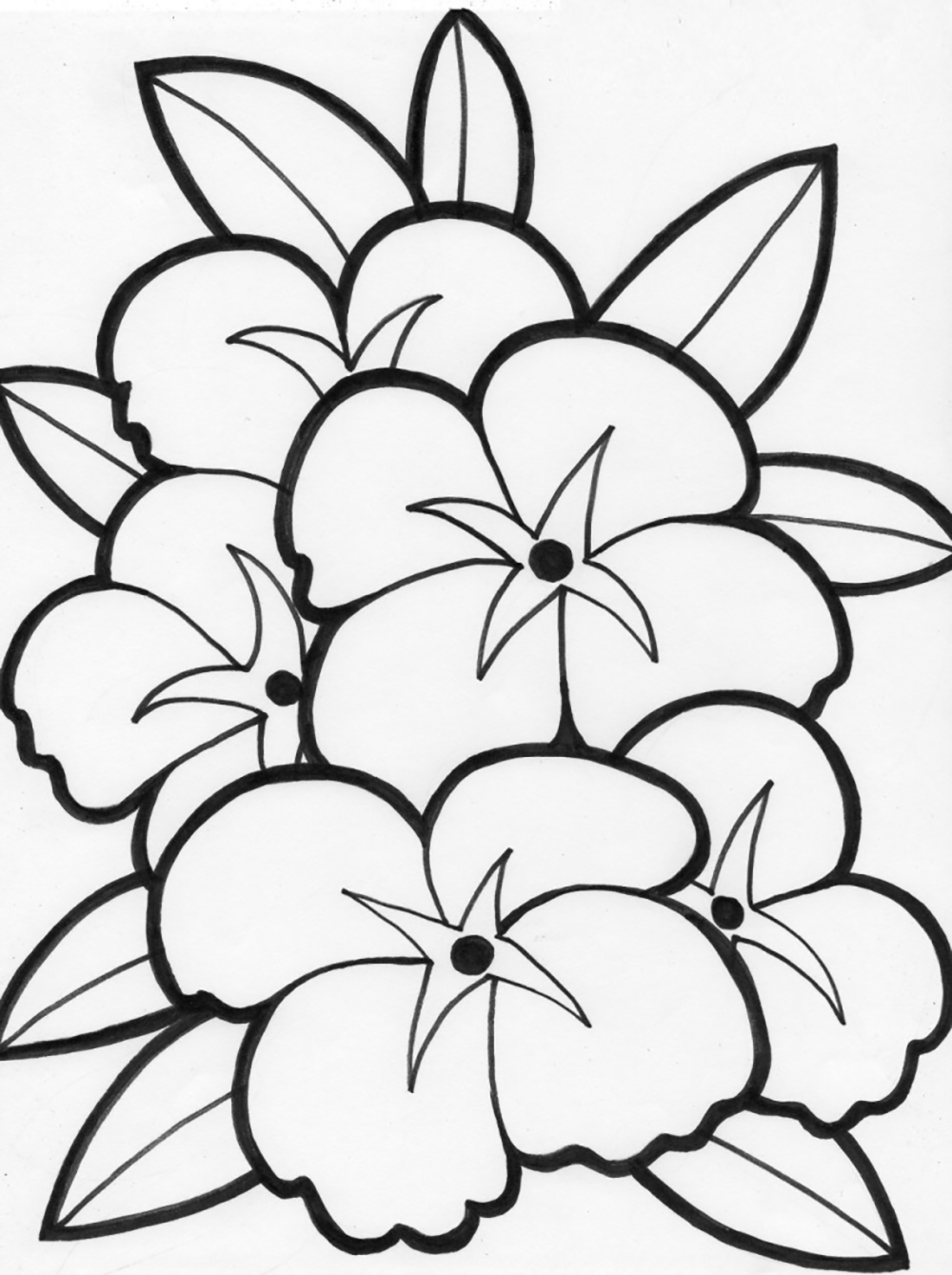 beautiful flowers coloring pages colorful flower drawing at getdrawings free download coloring beautiful flowers pages