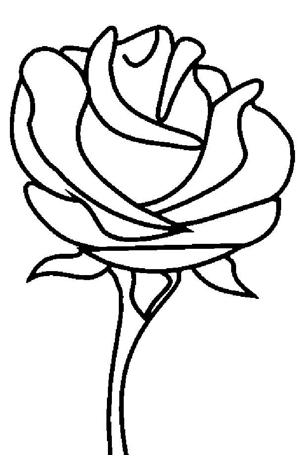 beauty and the beast rose coloring pages free beauty beast rose coloring sheet disneyland 2014 the coloring beast beauty and rose pages