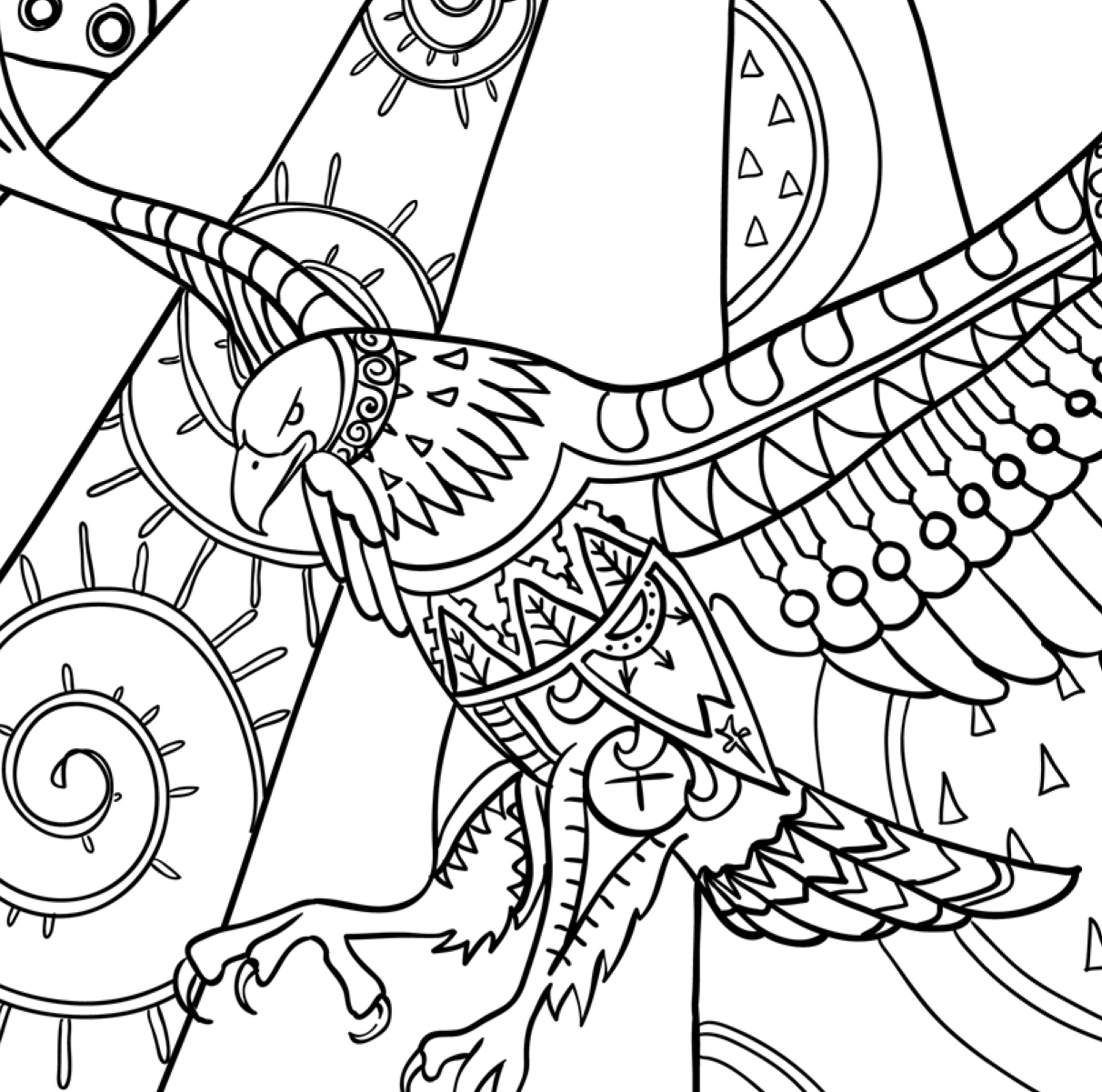 bird coloring pages for adults amazing birds adult coloring book review promotion bird for coloring pages adults