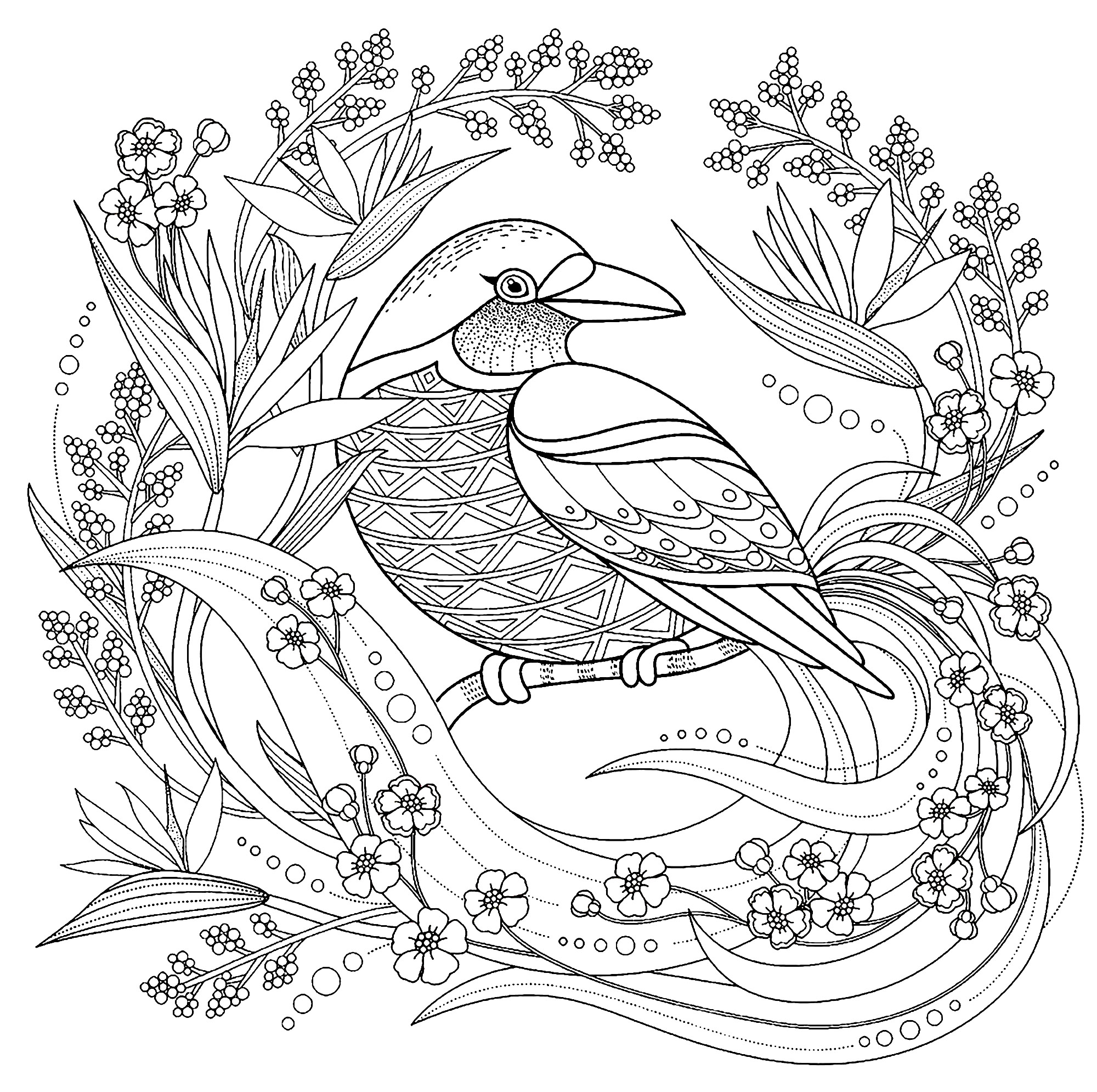 bird coloring pages for adults birds free to color for children birds kids coloring pages bird coloring pages for adults