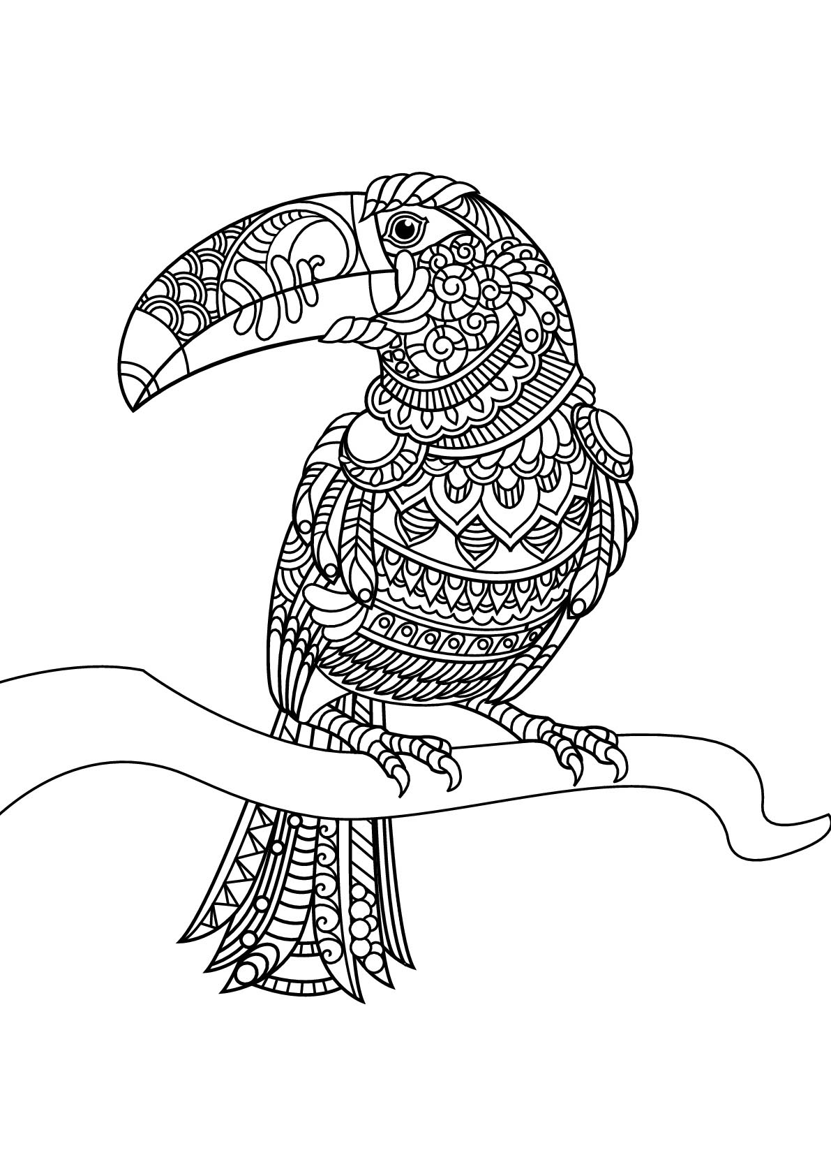 bird coloring pages for adults birds free to color for children birds kids coloring pages pages bird coloring for adults