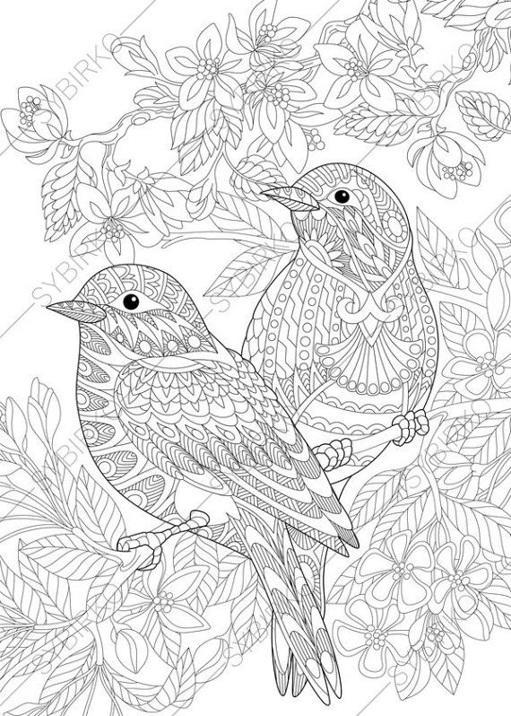 bird coloring pages for adults coloring pages for adults lovely birds couple spring bird for coloring adults pages