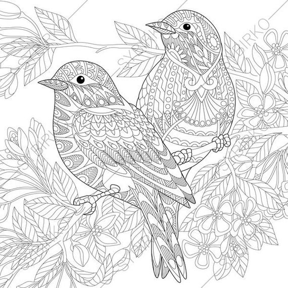 bird coloring pages for adults parrots bird adult free coloring pages realistic coloring bird adults pages for