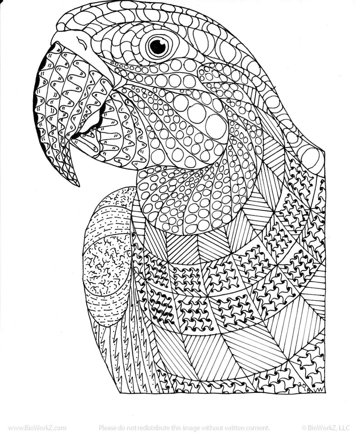 bird coloring pages for adults pin on adult coloring books adults bird for coloring pages