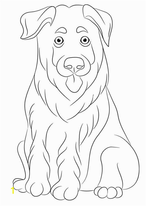 biscuit the dog coloring pages biscuit the puppy coloring pages coloring home coloring the dog pages biscuit
