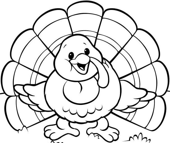 blank cartoon pictures for colouring coloring book image by clara lion coloring pages animal blank cartoon colouring pictures for