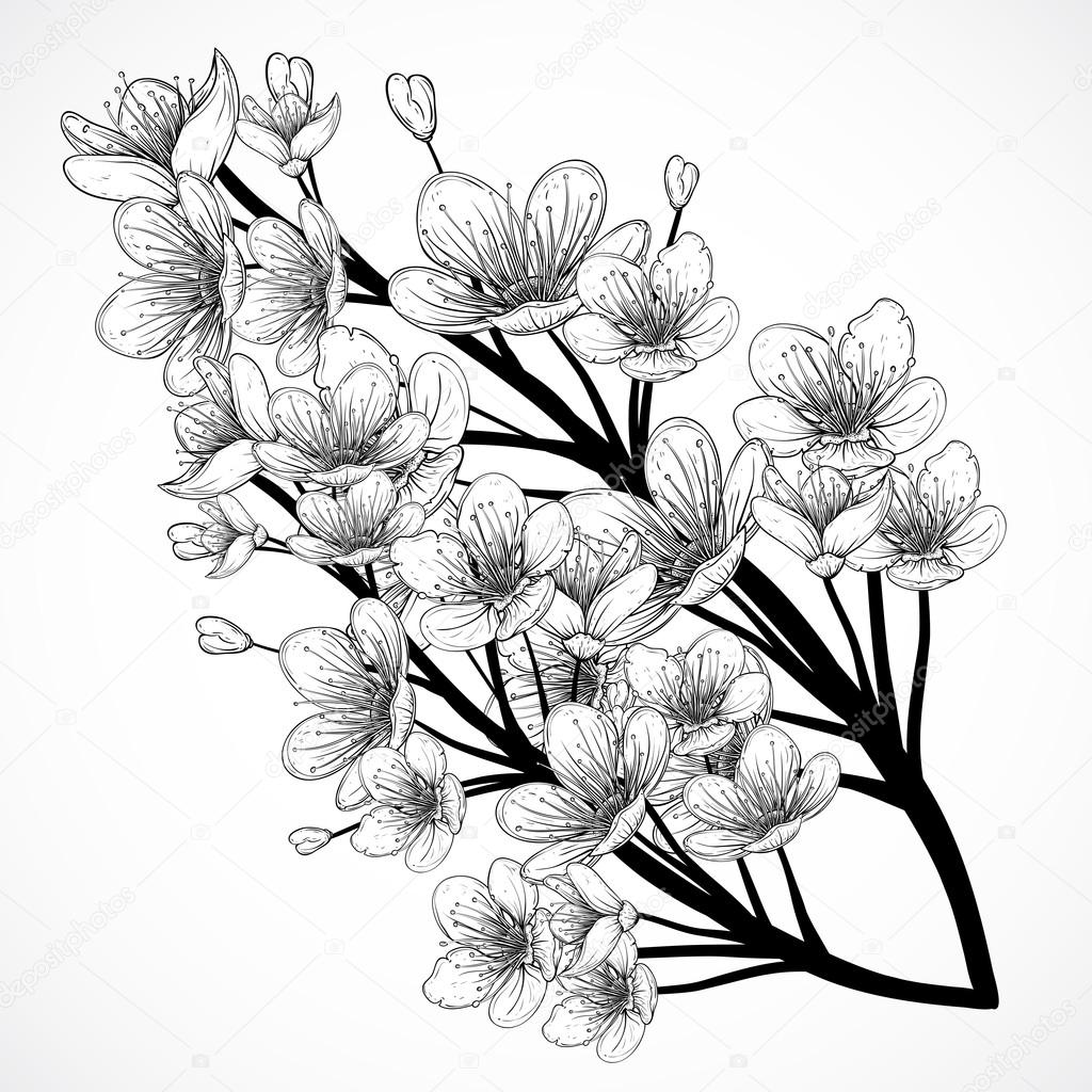 blossom tree drawing apple blossom clip art flowering tree branch apple tree blossom drawing