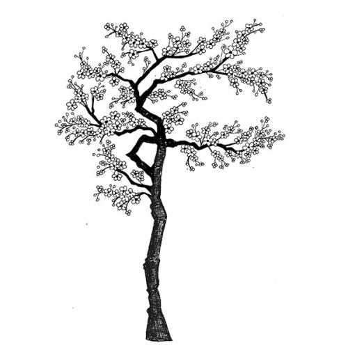 blossom tree drawing cherry blossom line drawing at getdrawings free download tree drawing blossom
