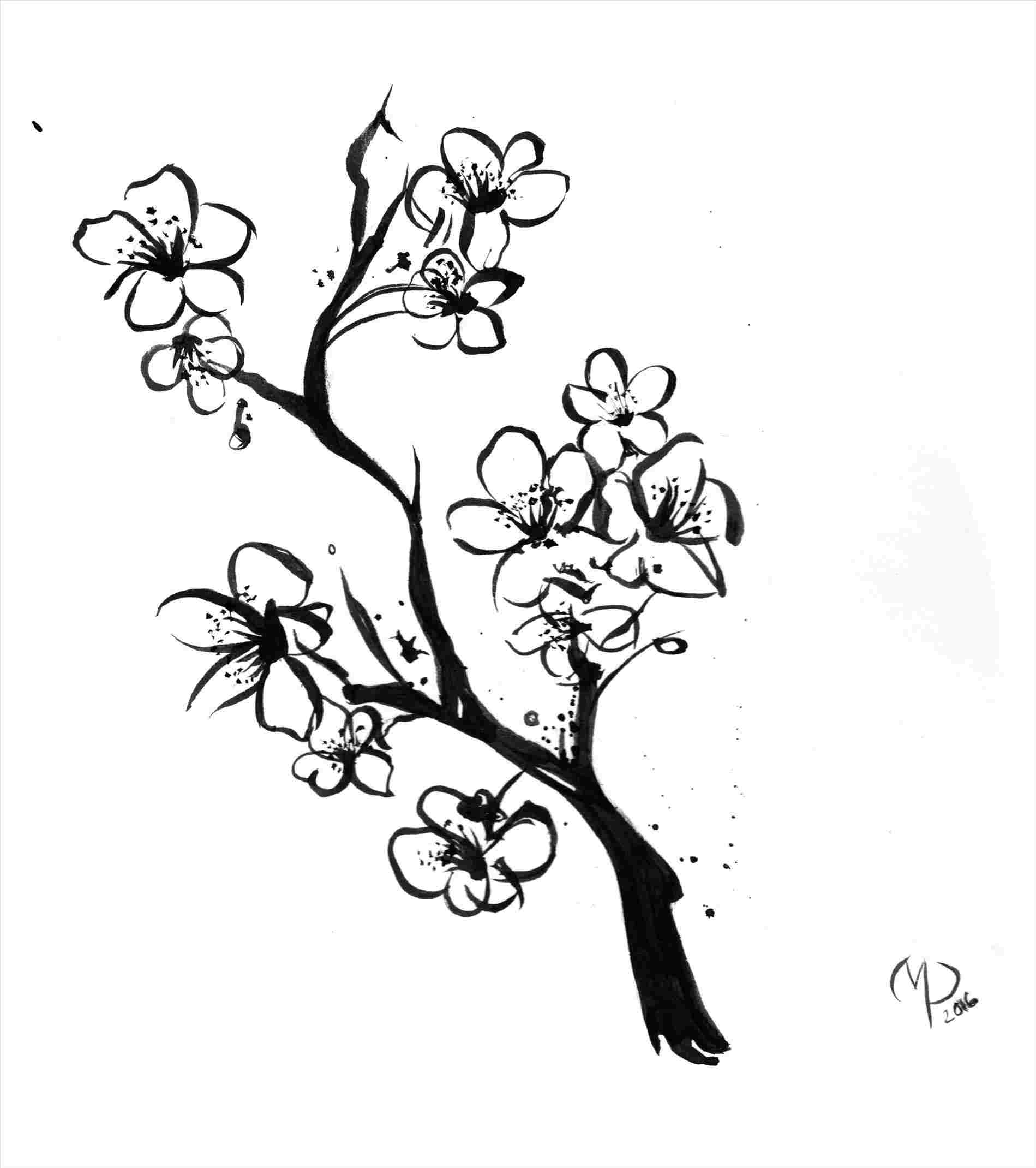 blossom tree drawing spring tree drawing at getdrawings free download tree drawing blossom
