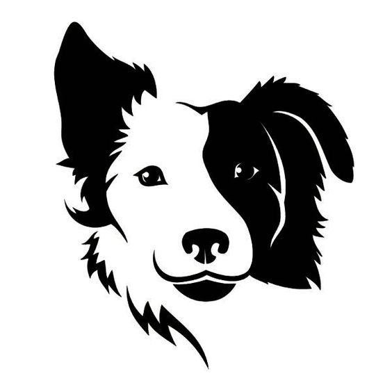 border collie silhouette border collie silhouette bumper stickers car stickers border collie silhouette