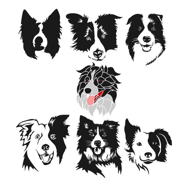 border collie silhouette border collie silhouette decal collie border silhouette