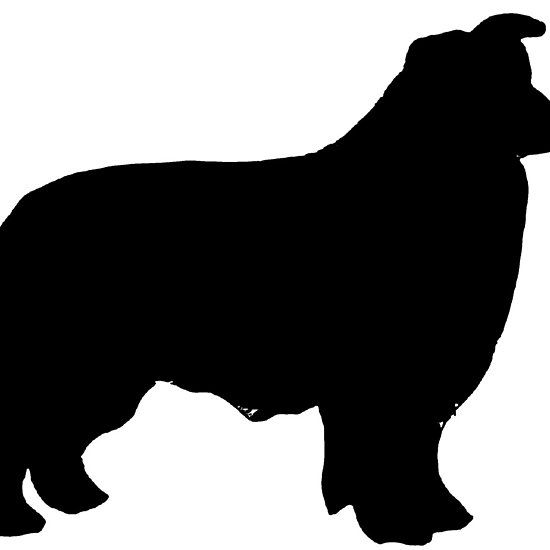 border collie silhouette border collie svg border colly silhouette cliart puppy border collie silhouette