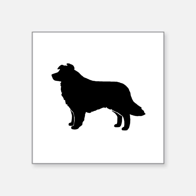border collie silhouette collie dog animal silhouette animal silhouette collie collie silhouette border