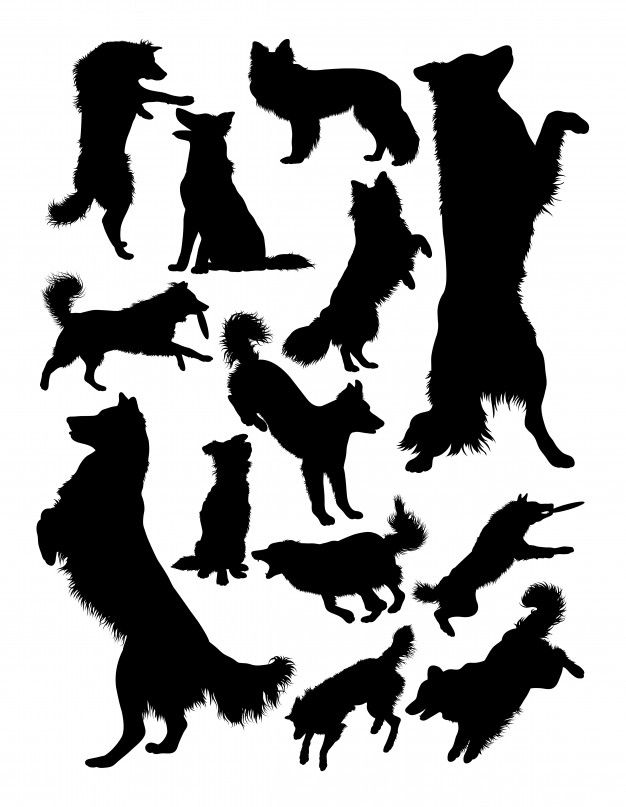 border collie silhouette pin by cuttabledesigns on animals border collie art dog collie border silhouette