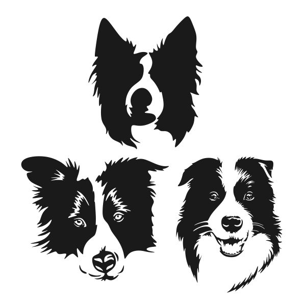 border collie silhouette quotborder collie herding silhouettequot sticker by missnisa silhouette border collie