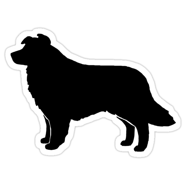border collie silhouette royalty free border collie clip art vector images border collie silhouette