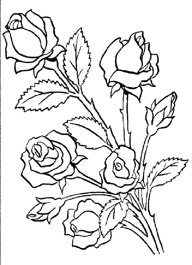 bouquet of roses coloring pages bouquet of flowers coloring pages for childrens printable of pages bouquet coloring roses