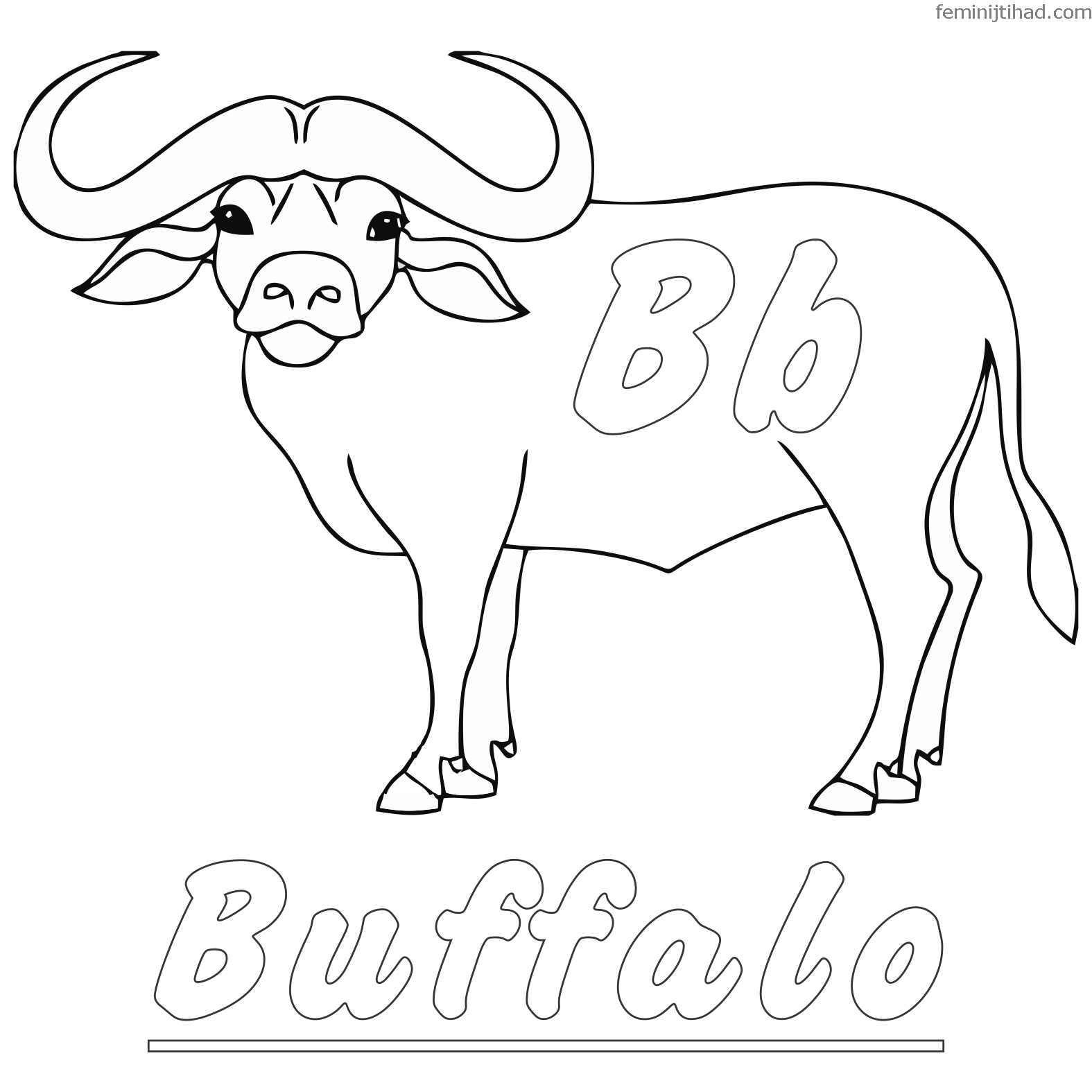 buffalo pictures to color american buffalo bison coloring page free coloring library color pictures buffalo to