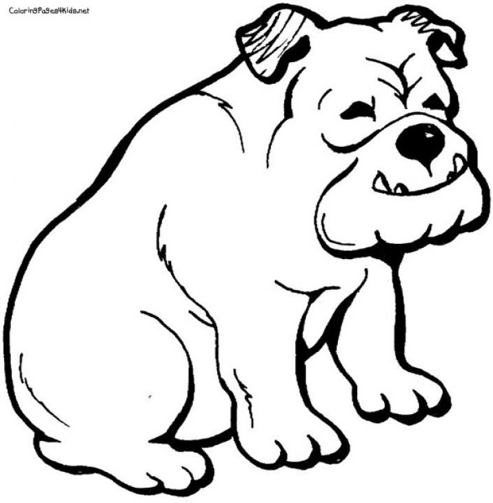 bulldog coloring page a smiling bulldog free coloring page to print bulldog coloring page
