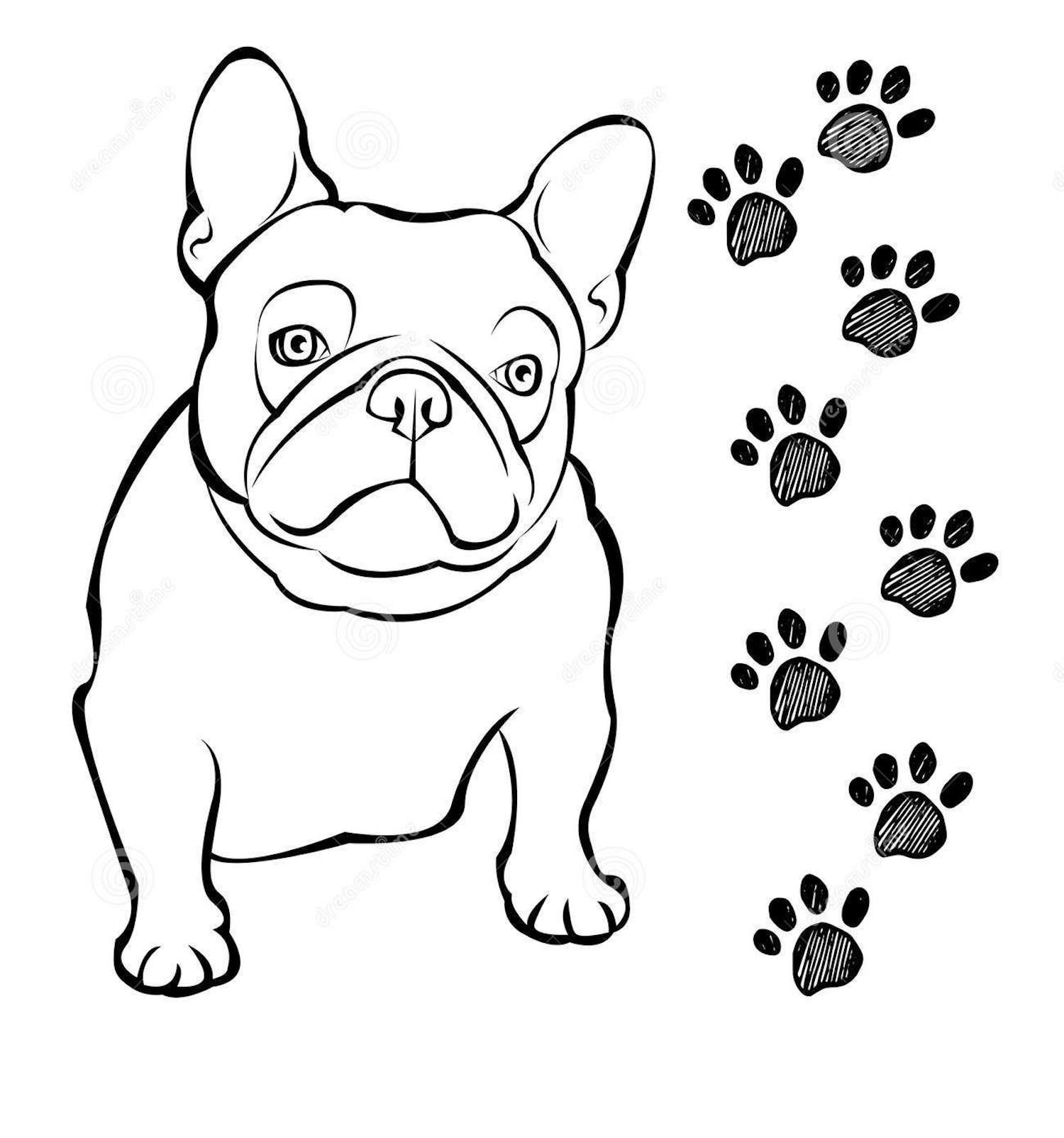 bulldog coloring page bulldog clipart coloring pages and other free printable page coloring bulldog