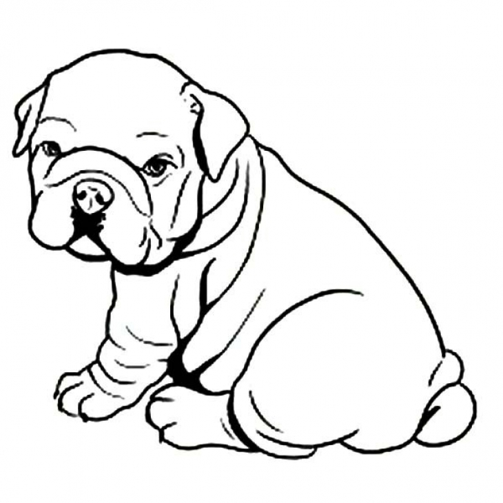 bulldog coloring page bulldog coloring download bulldog coloring for free 2019 bulldog page coloring