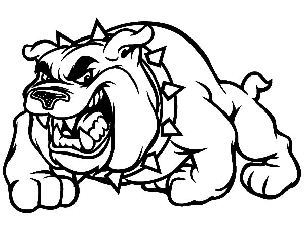bulldog coloring page bulldog coloring pages to download and print for free coloring page bulldog