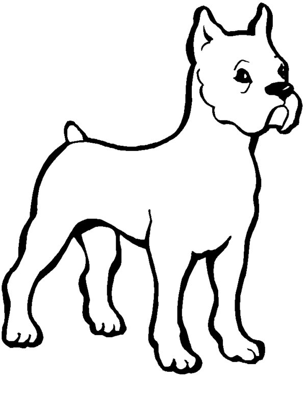 bulldog coloring page bulldog coloring pages to download and print for free coloring page bulldog 1 1